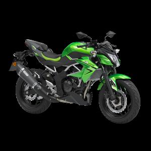 Kawasaki Z125 Performance - 2021