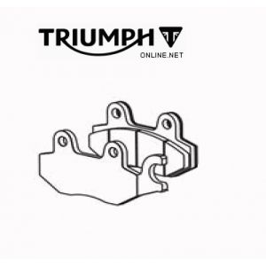Triumph Tiger 1200 / Explorer / Trophy Rear Brake Pad Set - T2025045